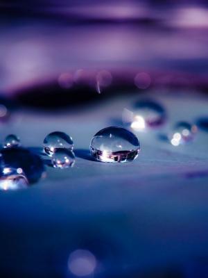 水滴宏景深的移动壁纸