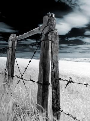 栅栏移动墙纸