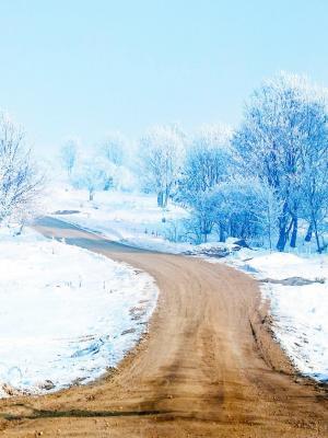 雪路移动壁纸