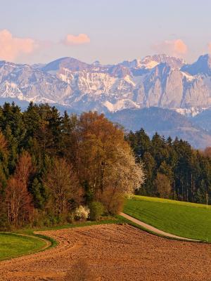 瑞士山手机壁纸
