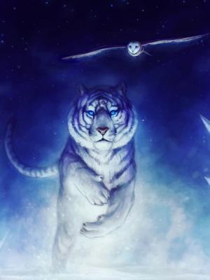 白虎猫头鹰艺术手机壁纸