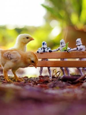 鸡星球大战玩具散景移动壁纸