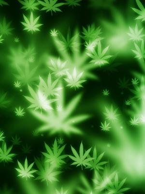 散景大麻移动壁纸