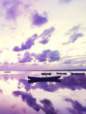 在海洋移动墙纸的紫色日落