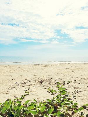 海滩云彩陆地手机壁纸