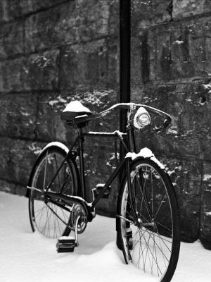 自行车在雪地移动壁纸