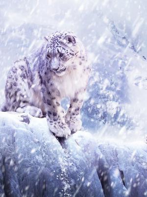 雪移动墙纸的豹子