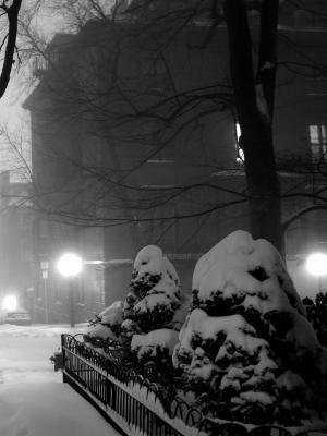 雪单色手机壁纸