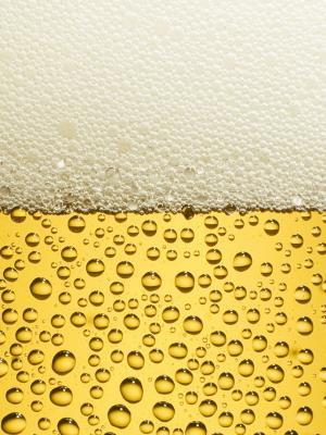 啤酒手机壁纸
