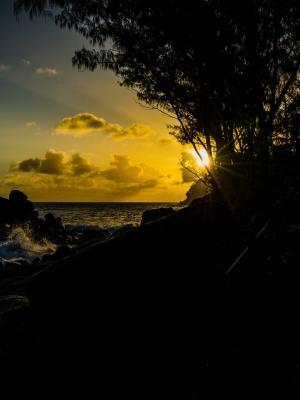 日落风景移动壁纸