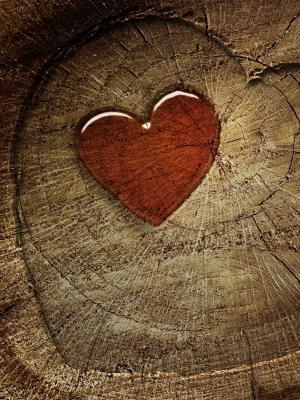心脏爱移动壁纸