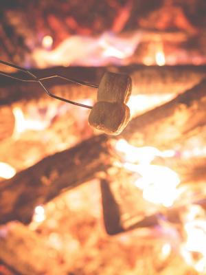 烧烤手机壁纸