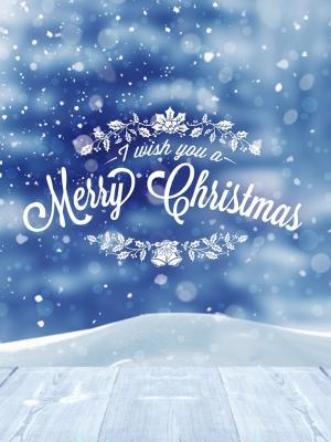 我祝你圣诞快乐皮条客移动壁纸