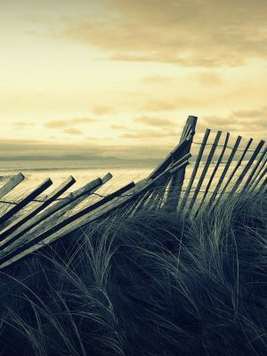 海滩栅栏移动壁纸