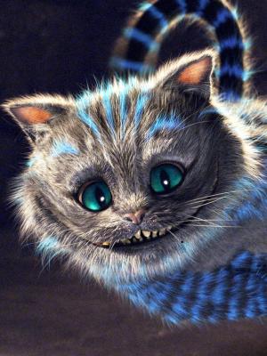 爱丽丝梦游仙境柴郡猫手机壁纸