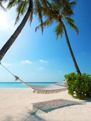 马尔代夫群岛移动壁纸