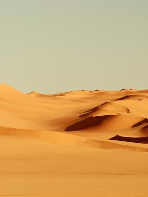 沙漠手机壁纸