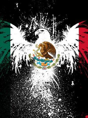 墨西哥国旗手机壁纸