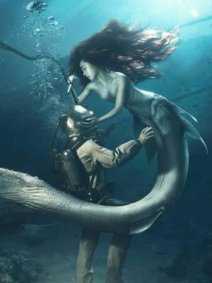 潜水者和美人鱼手机壁纸