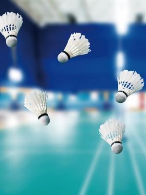 运动羽毛球羽毛球移动壁纸