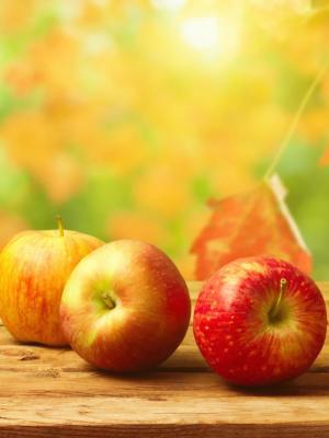 秋天苹果手机壁纸