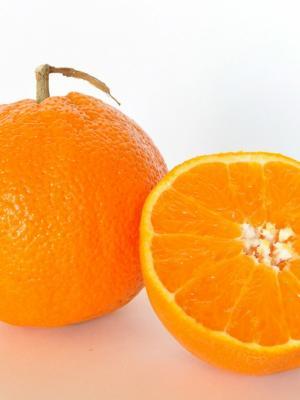 橙色水果手机壁纸