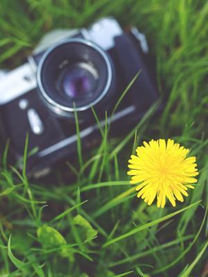 相机摄影师黄色摄影手机壁纸