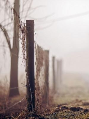 雾道路围栏移动壁纸