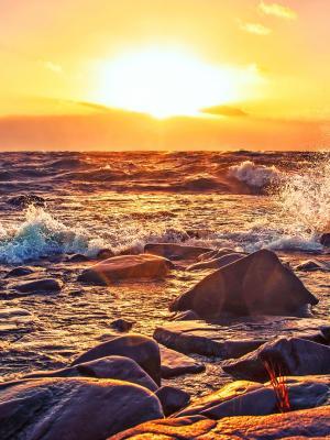 美丽的日落移动壁纸