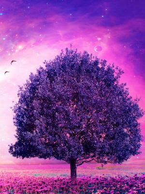 梦树手机壁纸