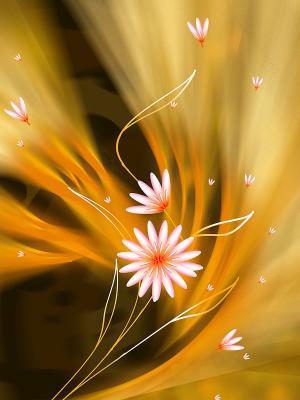 艺术花朵手机壁纸