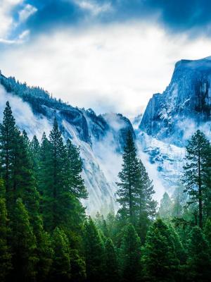 雾山移动壁纸