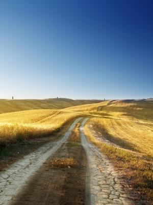 风景Fields Hills手机壁纸